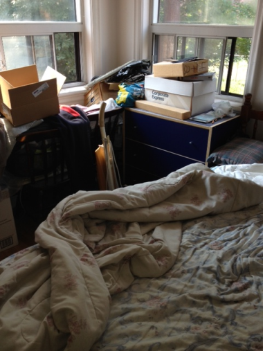 Bedbugs love clutter and thrive in an environment like this. Lots of places to Hide!